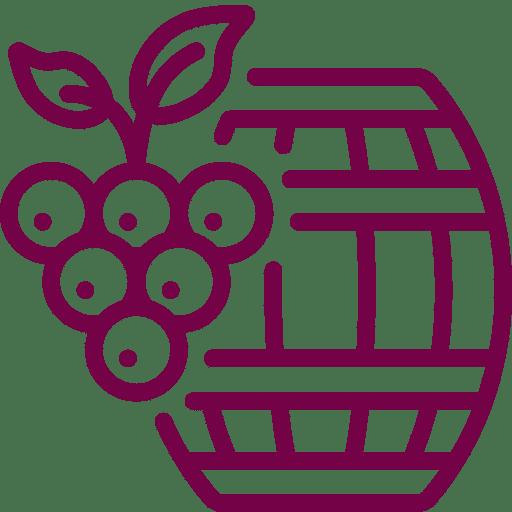 Conseil en amélioration des performances, filière viticole
